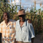 Jonah K is expecting to harvest 3 tonnes from his on hector field of maize